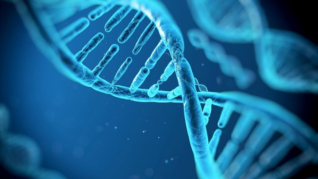 DNA - Informazioni Genetiche
