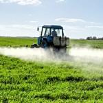 Celiachia: Colpa degli OGM!